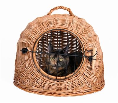 Afbeelding Trixie rotan kattenmand met deur ø 50cm